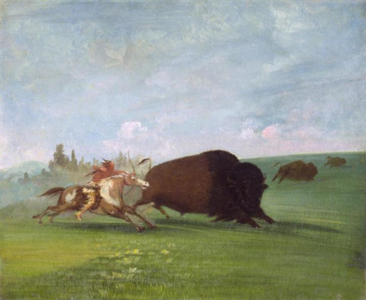 03 buffalo